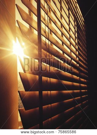 Sun Through the Blinds