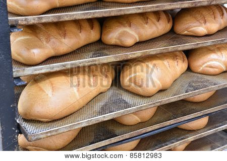 Baked Loaf