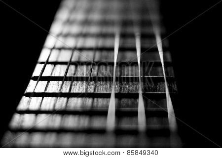 Guitar Strings In Black And White