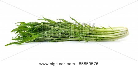 Mizuna Vegetable On White Background