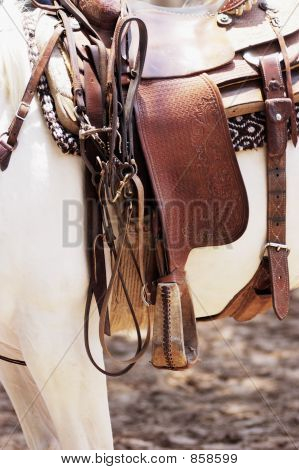 Saddle on a white horse. poster