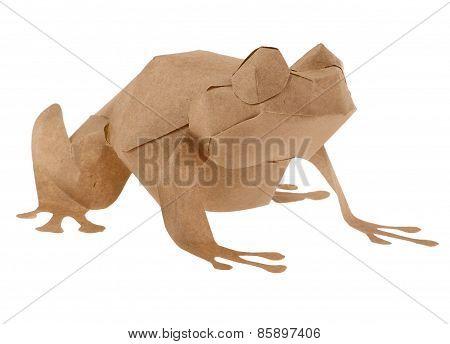 Brown Paper Frog