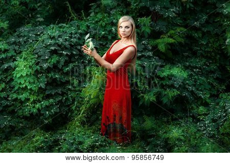 The Girl In The Red Dress Forest.