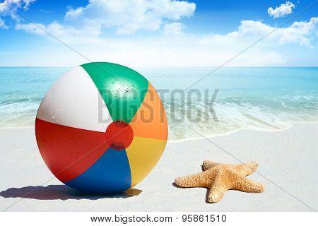 Fun Day At The Beach