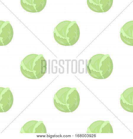 Cabbage icon cartoon. Singe vegetables icon from the eco food cartoon. - stock vector