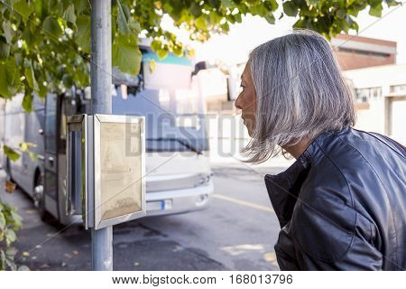 Attractive Business Woman Waiting For The Bus While Checking Timetables