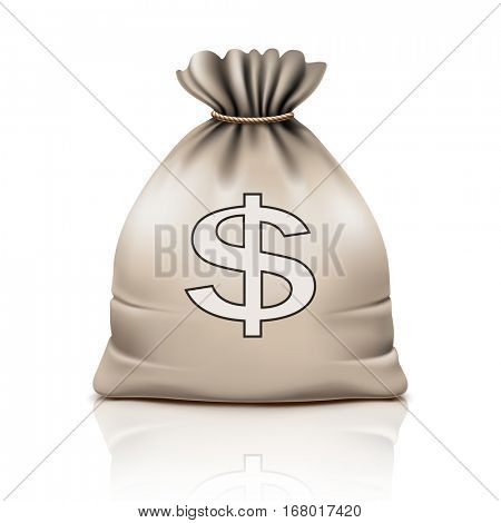 Bag with the Money on white background. Dollar Sign, Icon. Vector illustration.