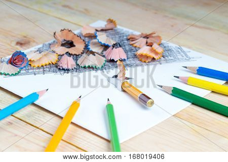 Pencil sharpener shavings on the white paper. Back to school. Copy space.