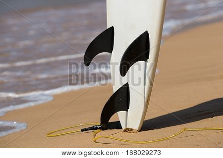 surfboards lays on the tropical beach and sea