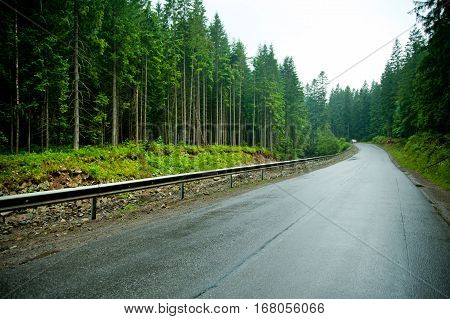 Empty curved road in a mountain forest after rain