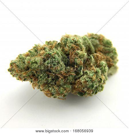 Usable dried marijuana flower Tangie Ghost Train strain.