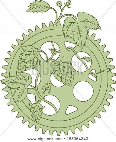 Drawing sketch style illustration of a Hop plant Humulus lupulus with flowers and seed cones or strobiles intertwined on a vintage single ring crank set on isolated white background.
