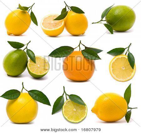 Fresh citrus set
