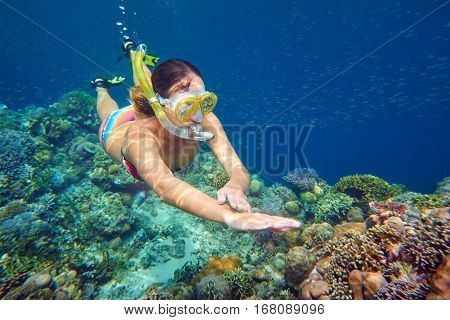 portrait snorkeling woman above the vivid coral reef