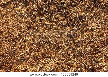 Sawdust Of Dry Tree Wood Texture And Background Details.