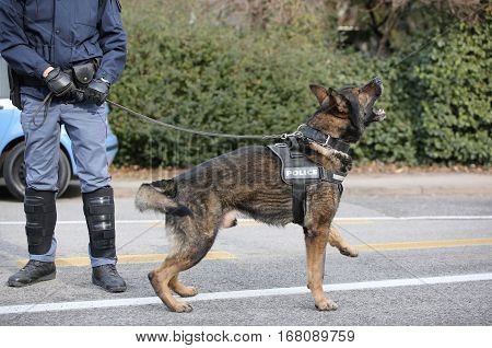 Police Dog Barks During An Anti-terrorism Control In The City