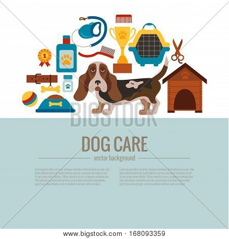 Basset hound care infographic concept with dog grooming isolated elements. Puppy training colorful cartoon poster vector illustration template for pet shops designs.