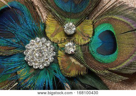 Peacock Feather Hair Clip