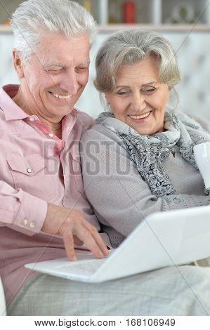 Portrait of a mature couple using laptop, close up