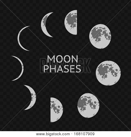 Phases of Moon Card. Whole Astronomy Cycle on a Transparent Background. Vector illustration