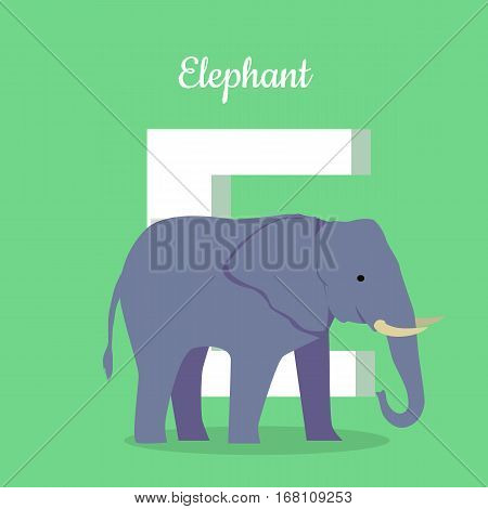 Animals alphabet. Letter - E. Blue elephant stands near letter. Alphabet learning chart with animal illustration for letter and animal name. Vector zoo alphabet with cartoon animal on green background