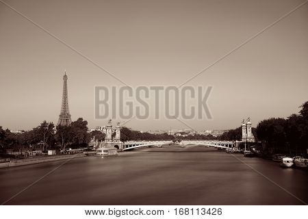 Alexandre III bridge and Eiffel Tower in Paris, France.