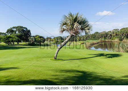 Golf Course Southbroom