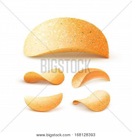 Vector  Set of  Potato Crispy Chips Close up Isolated on White Background