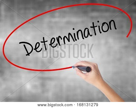 Woman Hand Writing Determination  With Black Marker Over Transparent Board