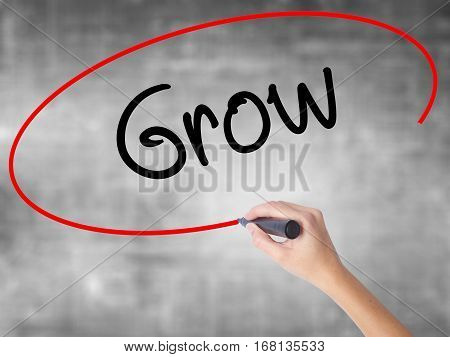 Woman Hand Writing  Grow With Black Marker Over Transparent Board