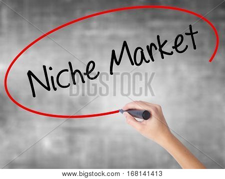 Woman Hand Writing Niche Market With Black Marker Over Transparent Board.