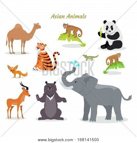 Asian animals fauna species. Cute asian animals flat vector. Northern predators. Nature concept for children s book. Camel, panda, tiger, chameleon, monkey, deer, grizzly bear elephant