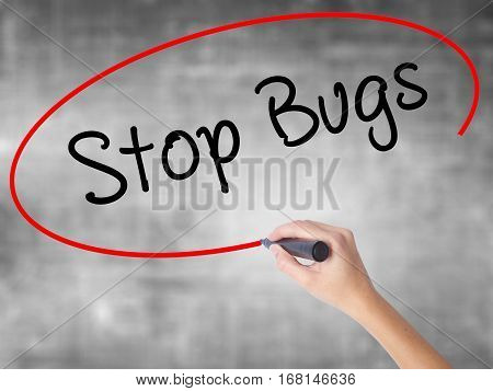 Woman Hand Writing Stop Bugs With Black Marker Over Transparent Board