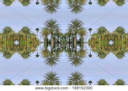 tree reflex in water beautiful in nature seamless concept pattern for background