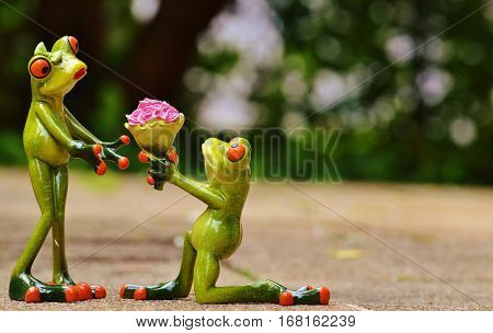 Forgiveness, marriage proposal, unfortunately, frog, sweet, cute, funny, flower, knee, souvenirs, congratulations, love, love, Valentine's Day, roses, forgive.