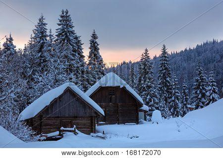 Evening Winter Ukrainian Carpathian Mountains Landscape.