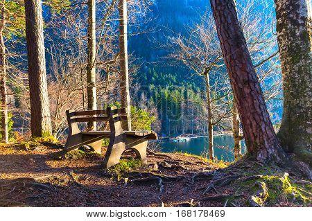 bench at bavarian lake near Neuschwanstein in german alps in Bavaria, germany