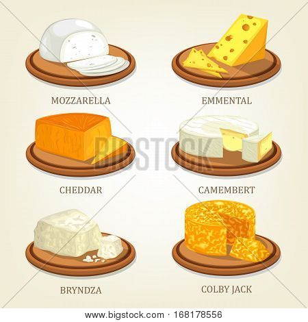 Italian dairy mozzarella and english cheddar, emmental or swiss emmentaler, french camembert and polish bryndza, american colby jack or cojack. Cheese food and fat nutrition, appetizer theme
