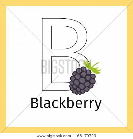 Kids education card with blackberry and outline letter B for coloring, vector illustration