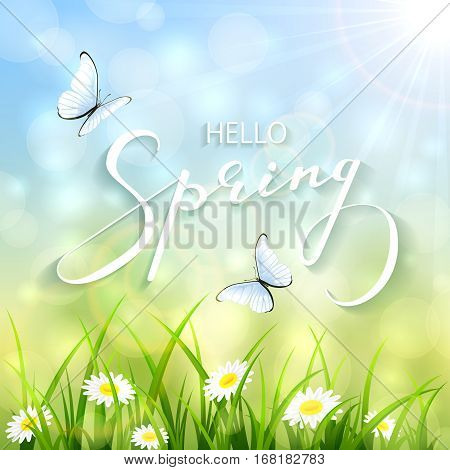Lettering Spring with bokeh light and sun beams, sunny natural background with a butterflies flying above the grass and flowers, illustration.
