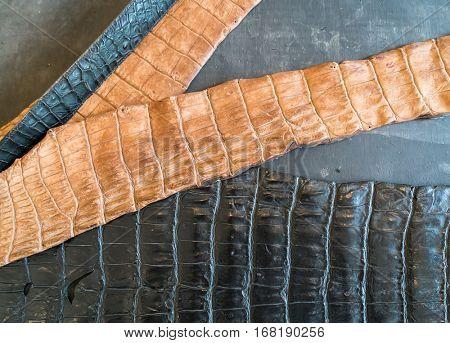 fragment crocodile leather