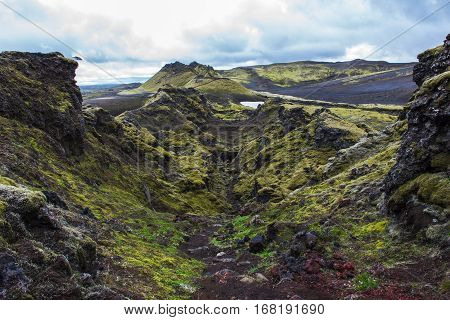 Volcanic landscape in Lakagigar with saturated green moss black volcanic sand and craters on Iceland