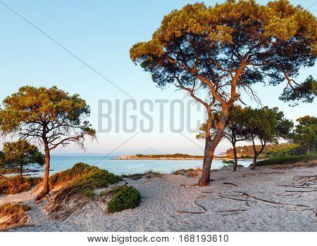Sunset Aegean Sea Coast (chalkidiki, Greece).