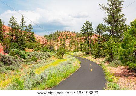 Mountain road at  Bryce Canyon National Park