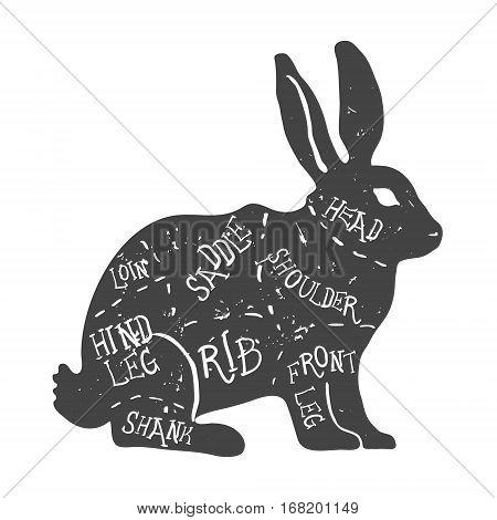 Vintage typographic rabbit butcher cuts diagram Vector illustration