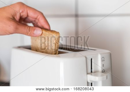 Putting a slice of bread to the white toaster