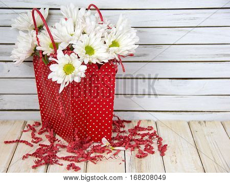 white daisy bouquet in red polka dot gift bag on rustic wood