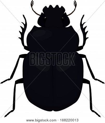 Scarab icon. Simple illustration of scarab black beetle isolated on white