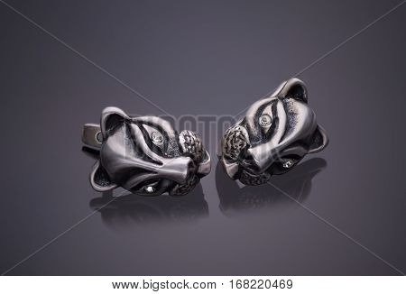 Silver jewelery earrings isolated on a gray background