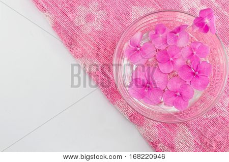 Hortensia Flowers Floating In A Bowl Of Water